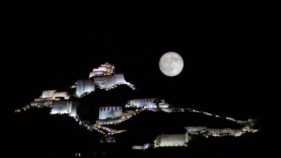 Potala moonlight wallpaper