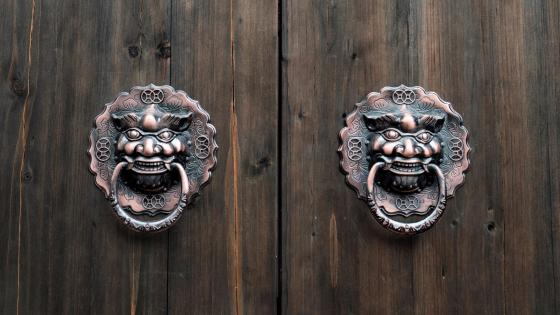 Lion head knocker wallpaper