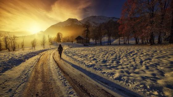 Early morning in winter wallpaper