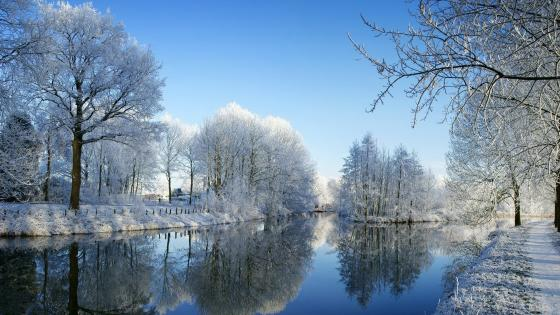 Winter reflection in canal wallpaper