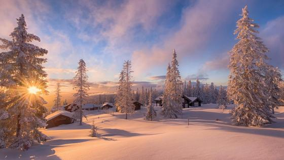 Snowy cabins in Norway wallpaper