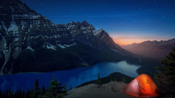 Peyto Lake at night (Banff National Park) wallpaper