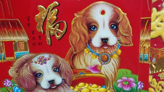 Chinese dog year wallpaper