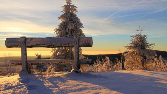 Snowy bench wallpaper
