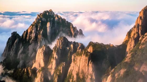 Huangshan in sea of clouds wallpaper