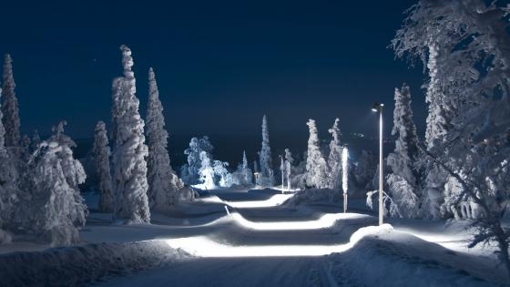 Snowy winter road at night wallpaper