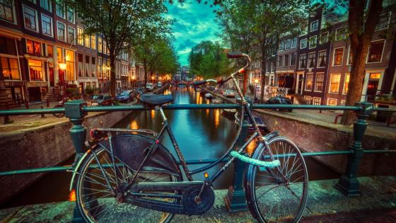Bicycle in Amsterdam wallpaper