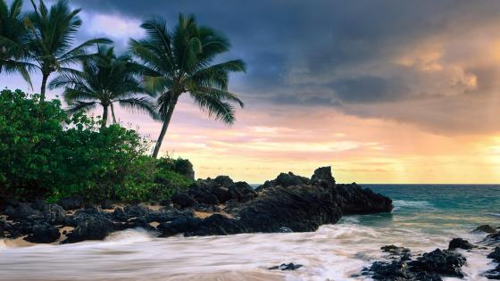 Makena Cove - Maui wallpaper
