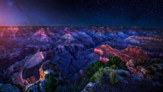 Grand Canyon National Park under the starry sky wallpaper