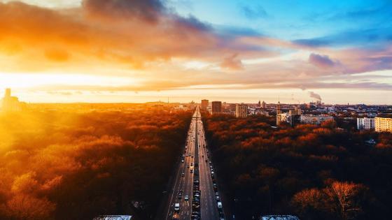 Tiergarten Park - Aerial view wallpaper