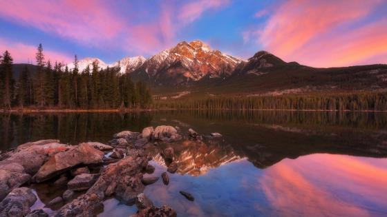 Pyramid Mountain reflection - Jasper National Park, Alberta, Canada wallpaper