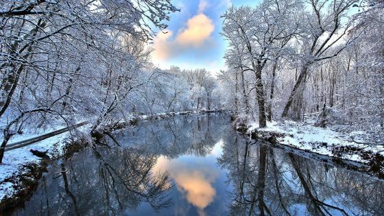 Winter reflection wallpaper