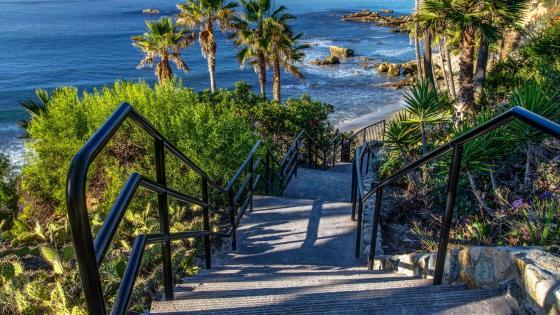 Stairs to Laguna Beach wallpaper