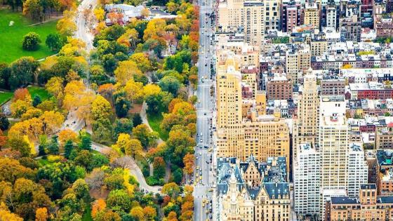 New York and Central Park aerial view wallpaper