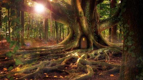 Tree house - Fantasy art wallpaper