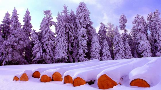 Firewood under snow wallpaper