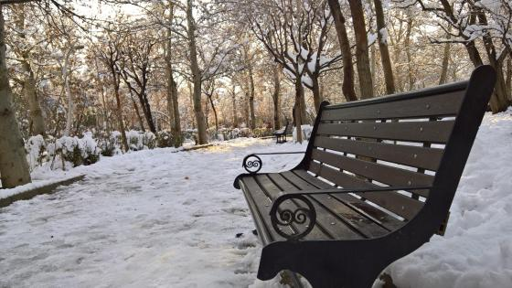 Bench in the snowy park in Tehran wallpaper