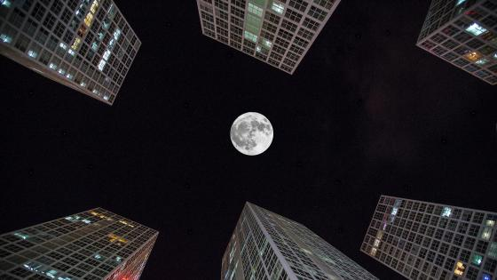 The moon in the middle of the buildings wallpaper