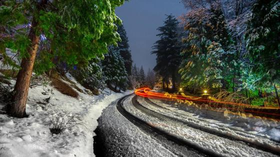 Winter road light trails wallpaper