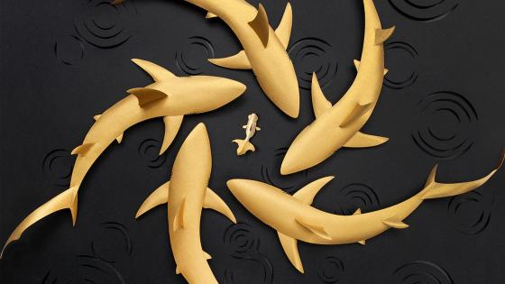 Fish gold shark wallpaper