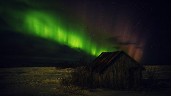Old barn under the polar lights wallpaper