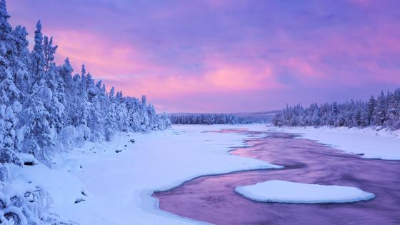 Lapland winter river wallpaper
