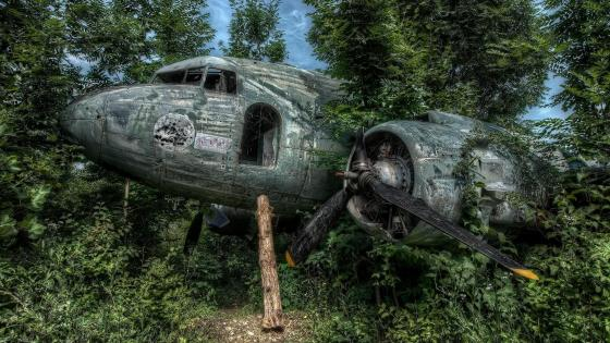 Abandoned aircraft wreck in the forest wallpaper