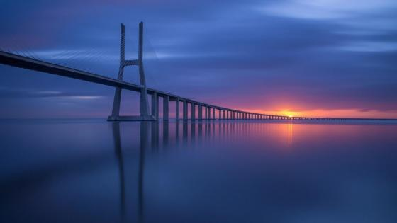 Vasco da Gama Bridge cable-stayed bridge wallpaper