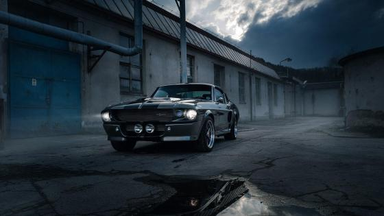 Ford Mustang Shelby Eleanor wallpaper