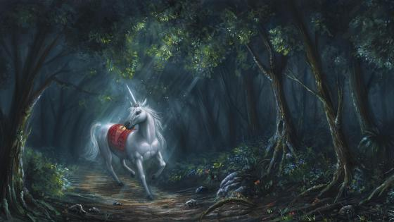 White Unicorn - Fairytale painting art wallpaper