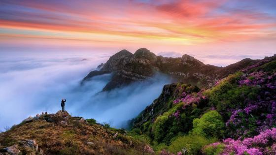 Wugong Mountain at spring wallpaper