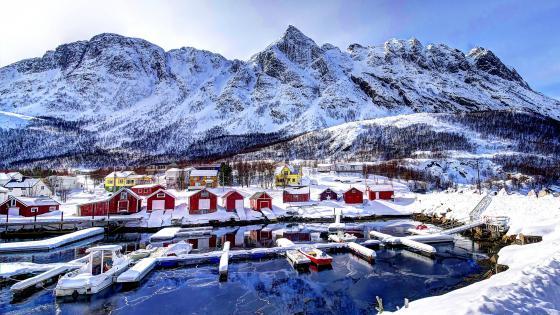 Red houses in Lofoten, Norway wallpaper
