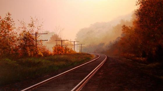 Tracks through the autumn fog at sunset wallpaper