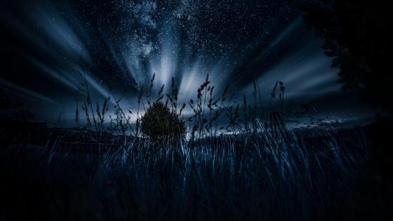 Strange lights in the darkness wallpaper