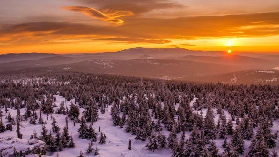Winter mountain sunset wallpaper