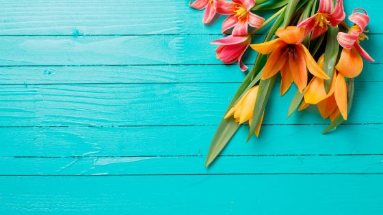 Flowers on blue wood planks wallpaper