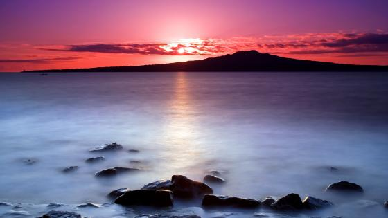 Rangitoto Island pink sunrise wallpaper