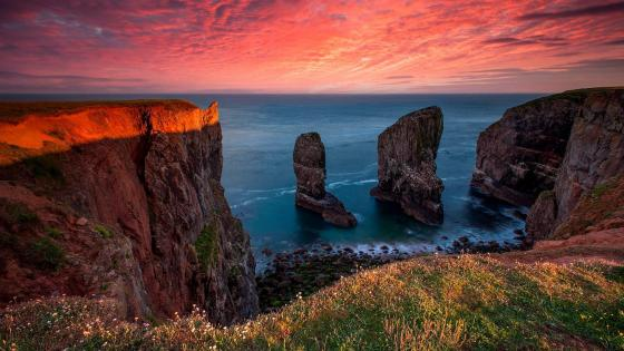 Elegug Stacks at Pembrokeshire Coast wallpaper
