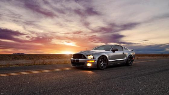 Ford Cobra Shelby GT500 wallpaper