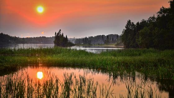 Sunset over the wetlands in Quebec, Canada wallpaper