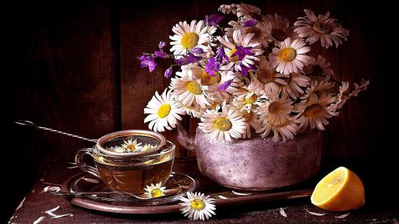 Chamomile Tea wallpaper