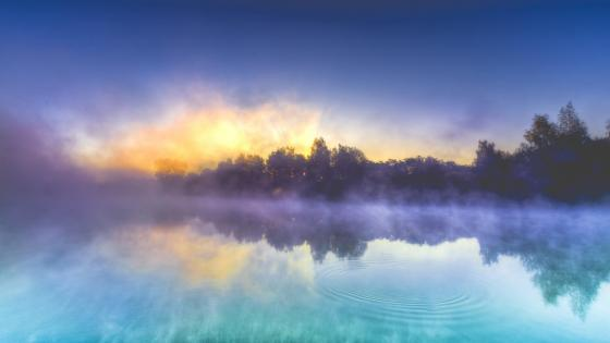 Wonderful misty morning reflection wallpaper