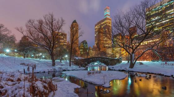 Central Park in winter wallpaper