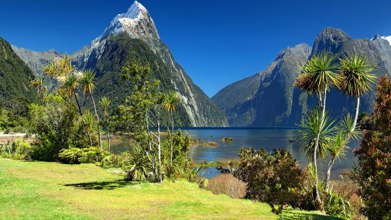 Mitre Peak and Milford Sound (New Zealand) wallpaper