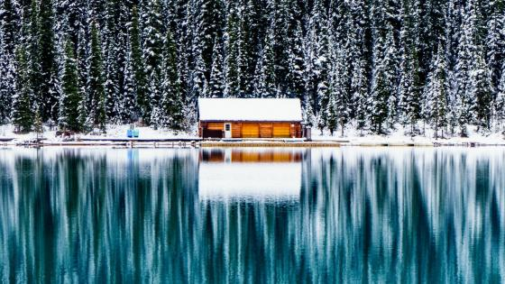 Log cabin at Lake Louise, Banff National Park wallpaper