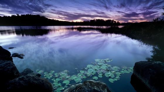 Stunning evening landscape wallpaper