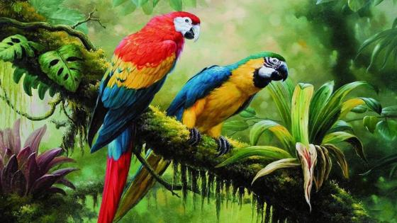 Parrot couple painting art wallpaper