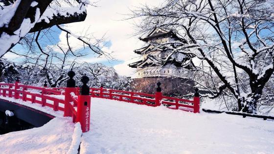 Hirosaki Castle at winter wallpaper