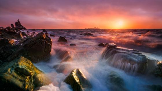 Seaside sunrise wallpaper