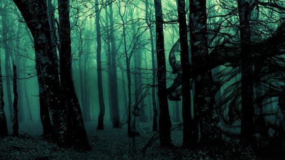 Creepy Dark Forest wallpaper